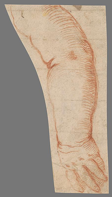 Stredoeurópsky majster z 18. storočia - Štúdia ruky