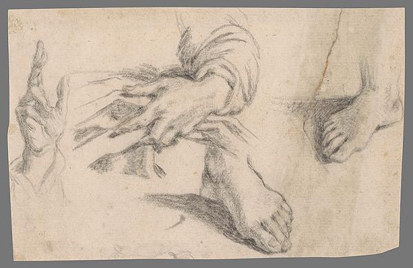 Stredoeurópsky majster z 18. storočia – Štúdie rúk a chodidiel