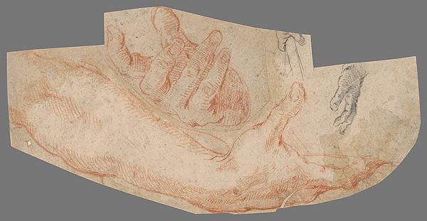 Stredoeurópsky majster z 18. storočia – Štúdia rúk