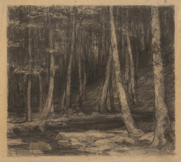 Ľudovít Čordák - Vnútro temného lesa