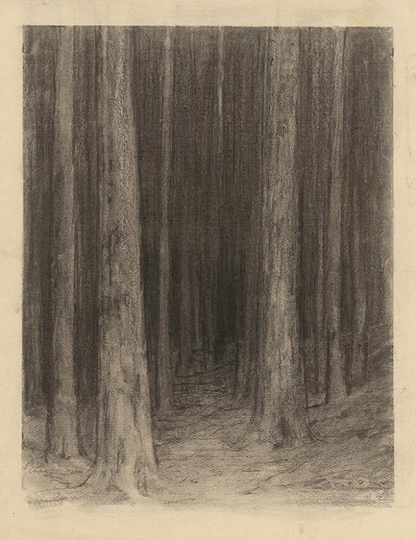 Ľudovít Čordák - Lesné šero