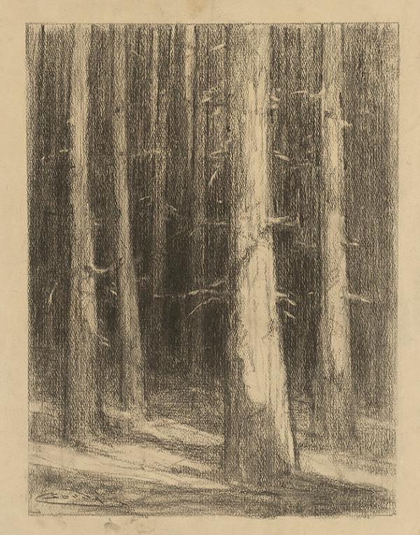 Ľudovít Čordák – Pne stromov