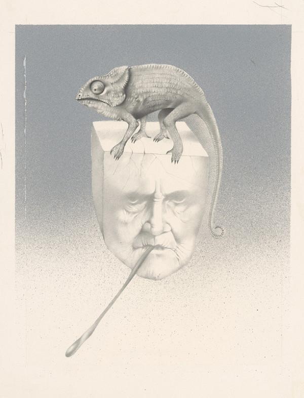 Dušan Nágel – Chameleon