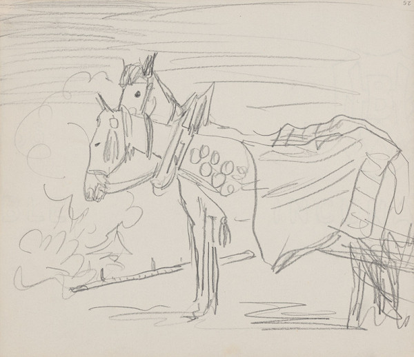 Arnold Peter Weisz-Kubínčan – Skicár 14 Zapriahnuté kone