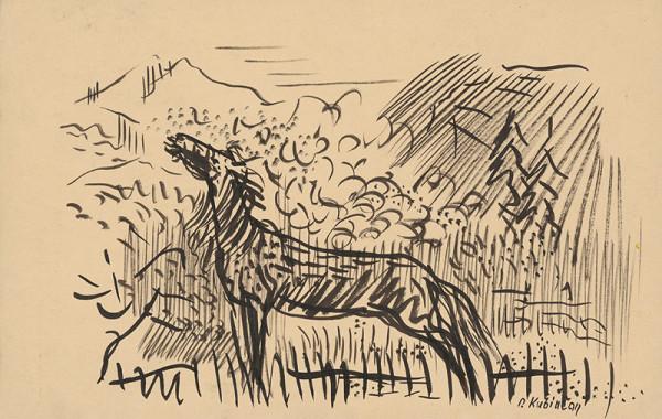 Arnold Peter Weisz-Kubínčan – Erdžiaci kôň