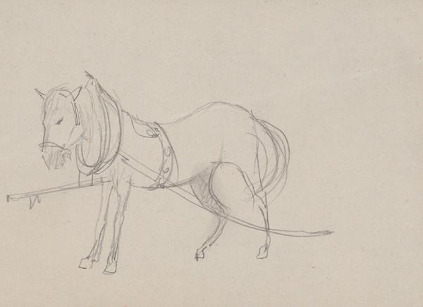Arnold Peter Weisz-Kubínčan – Kôň