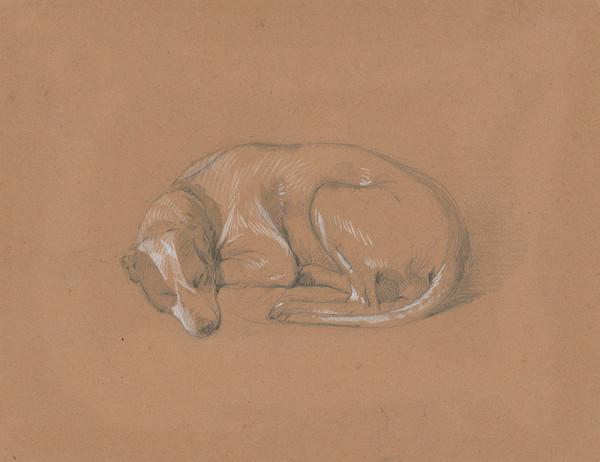 Friedrich Carl von Scheidlin – Spiaci pes