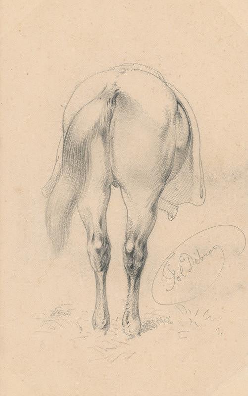 Friedrich Carl von Scheidlin – Štúdia koňa od zadu