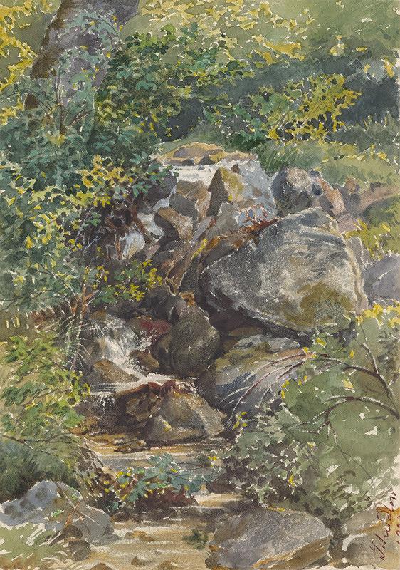 Friedrich Carl von Scheidlin - Lesná bystrina