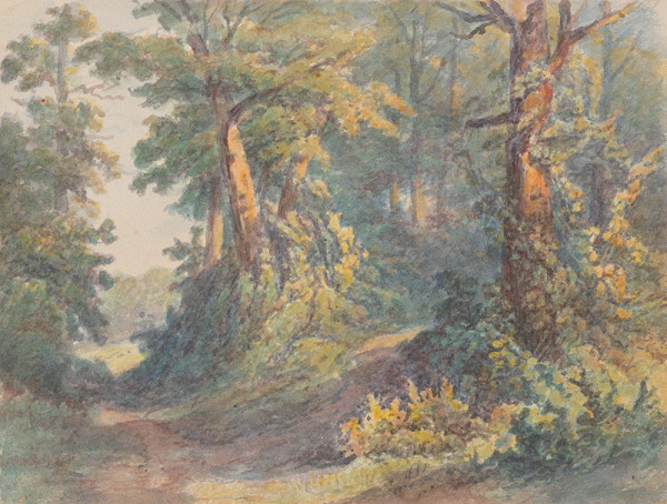 Friedrich Carl von Scheidlin - Lesné zákutie