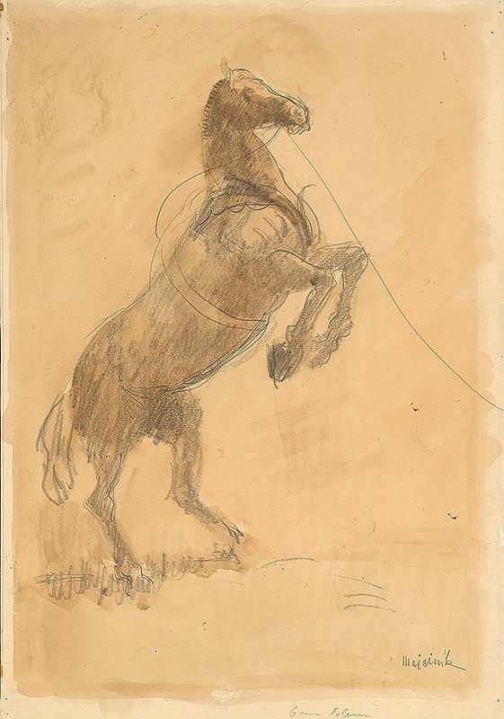 Cyprián Majerník – Vzpínajúci sa kôň