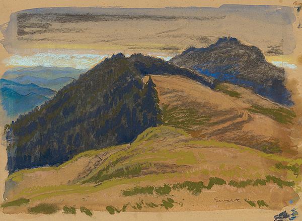 Edmund Gwerk - Polia v horách