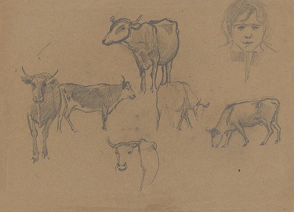 Ferdinand Katona – Štúdia kráv