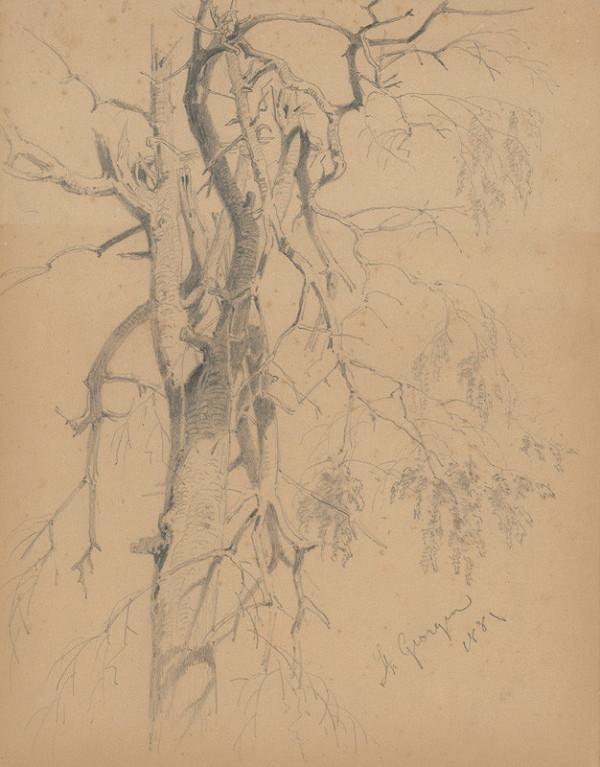 Friedrich Carl von Scheidlin – Štúdia stromu so zlomenými vetvami