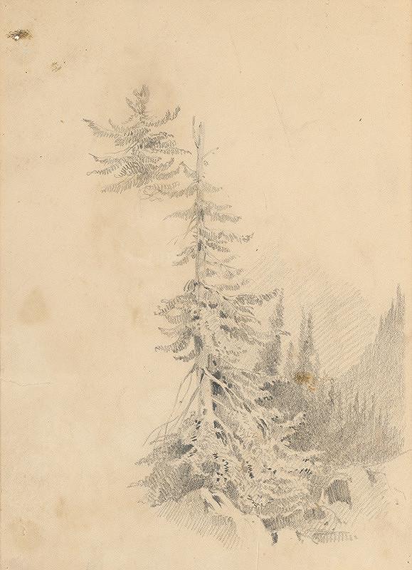 Friedrich Carl von Scheidlin – Horský motív s ihličnatým stromom v popredí
