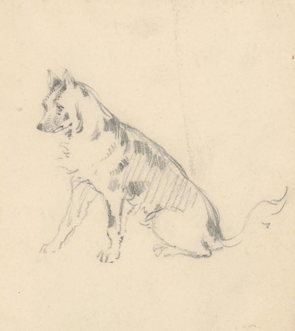 Friedrich Carl von Scheidlin – Štúdia sediaceho psa