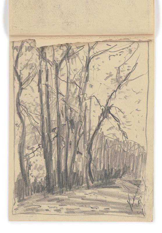Zolo Palugyay – Štúdia stromov pri ceste