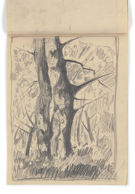Zolo Palugyay - Štúdia suchého stromu