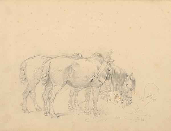 Friedrich Carl von Scheidlin – Štúdia dvoch pasúcich sa koní