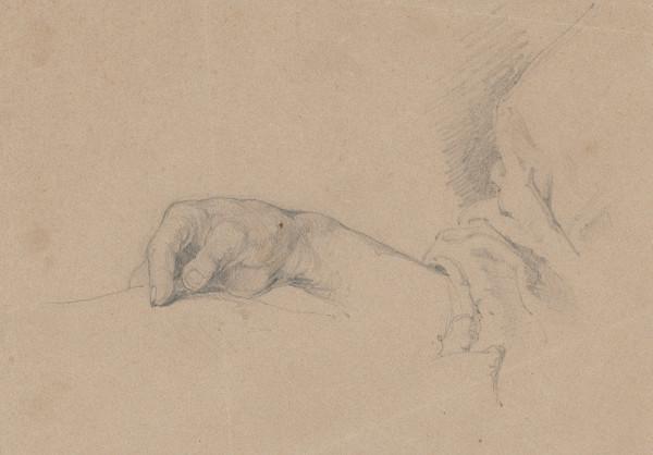 Friedrich Carl von Scheidlin – Detailná štúdia ruky