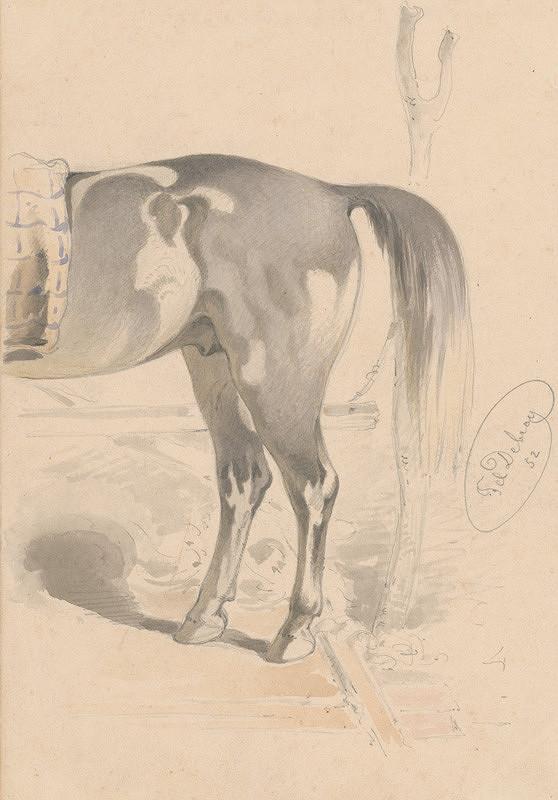 Friedrich Carl von Scheidlin – Detailná štúdia zadnej časti koňa