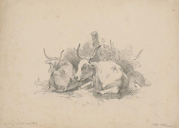 Henriette Jetti Wittmann - Odpočívajúce kravy