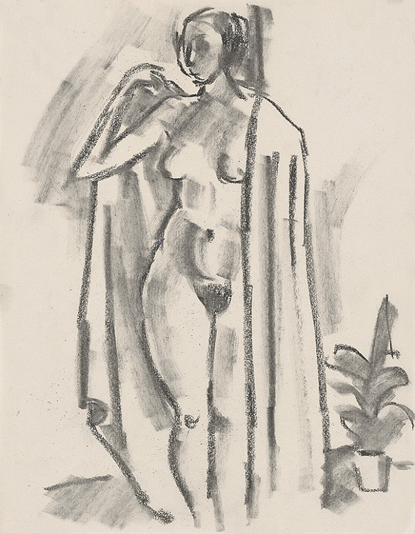 Eugen Nevan - Ženský akt s plášťom