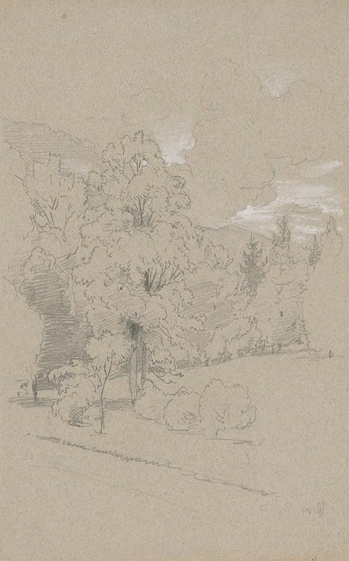 Jan Novopacký - Stromy na pokraji lesa