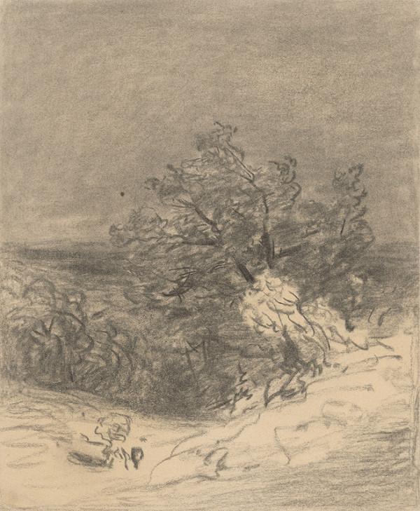 Jan Novopacký - Krajina so stromami