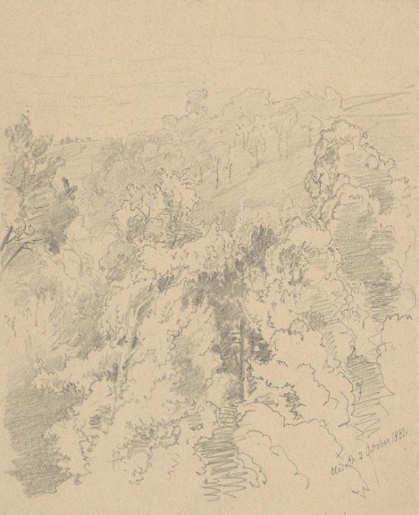 Jan Novopacký – Stráň s listnatými stromami