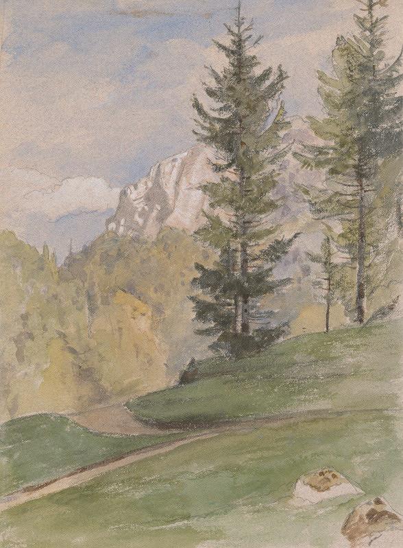 Jan Novopacký - Horská krajina s ihličnatými stromami