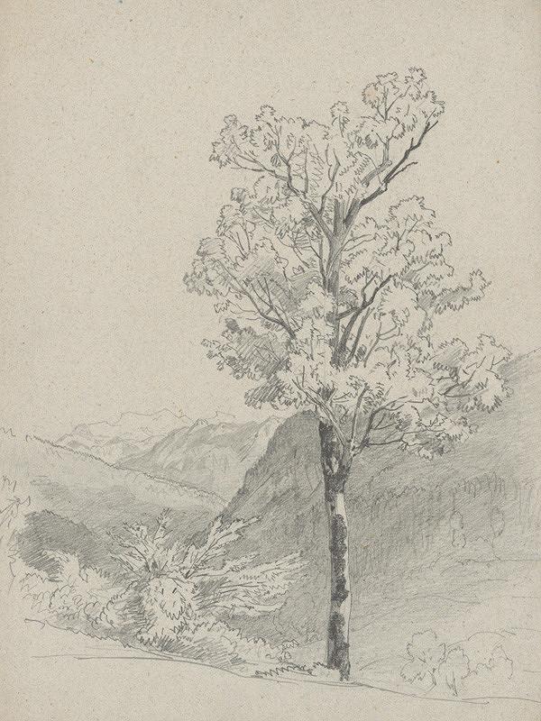 Jan Novopacký – Horská krajina v popredí s listnatým stromom