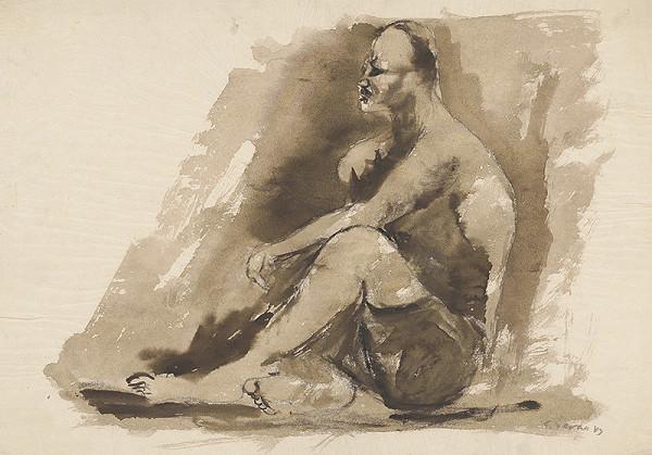 Eugen Nevan - Sediaci invalid