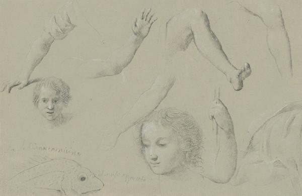 Taliansky maliar z 18. storočia - Štúdie hláv, rúk a nôh