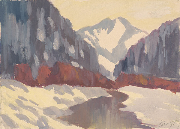 Zolo Palugyay - Potok v zime