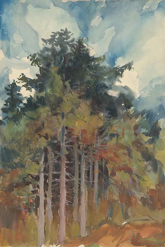 Zolo Palugyay - V lese na jeseň