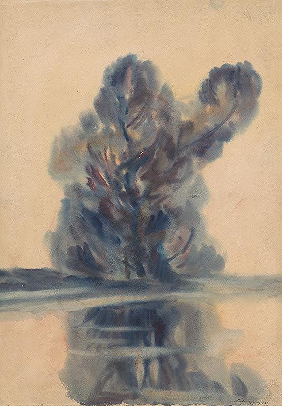 Zolo Palugyay – Modrý strom nad jazerom