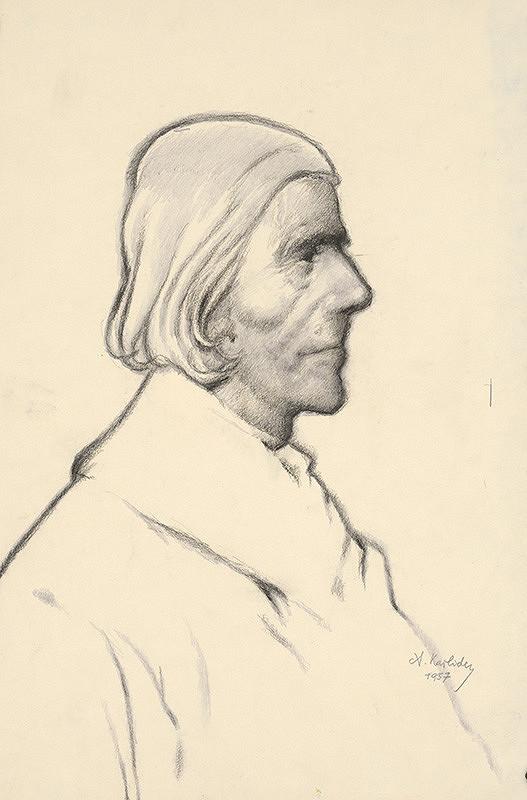 Aurel Kajlich - Chlap z kopaníc II.
