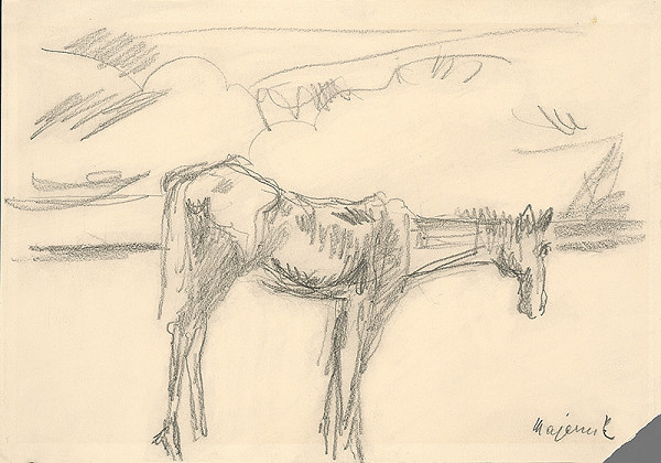 Cyprián Majerník – Osamelý koník