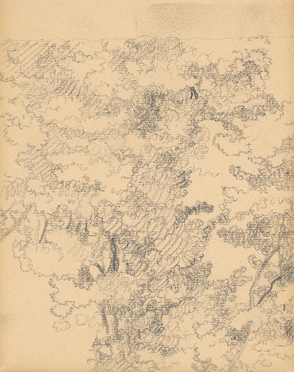 Ivan Žabota - Listnaté stromy