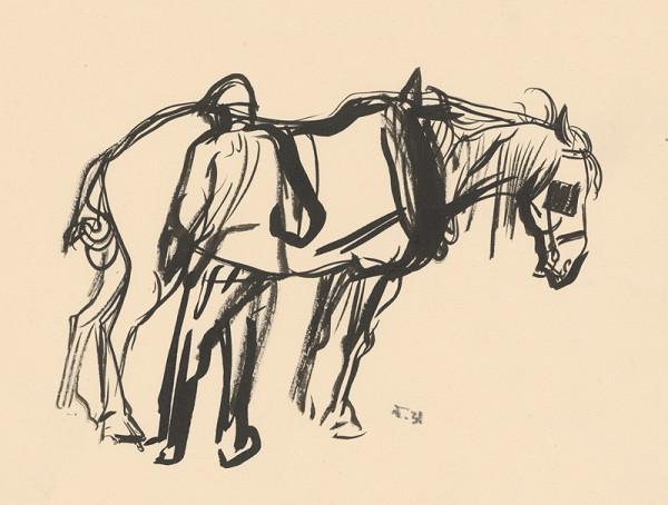 Jaroslav Vodrážka – Čistenie koňa