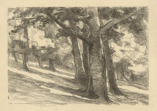 Ľudovít Čordák – Starý listnatý les