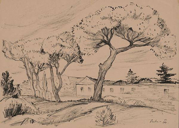 Matilda Čechová - Štúdia stromov