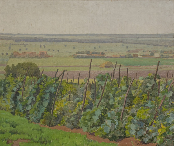 Július Koreszka - Vinohrad