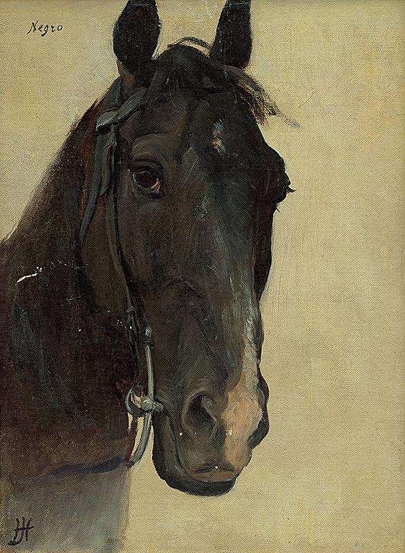 Jozef Hanula – Štúdia hlavy koňa Negro