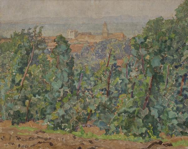 Július Koreszka - Skalica z vinohradov