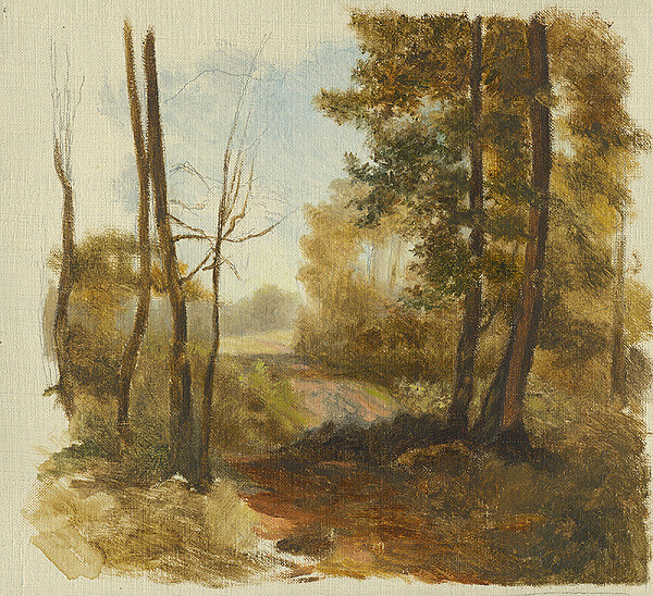 Jan Novopacký - Lesná cesta