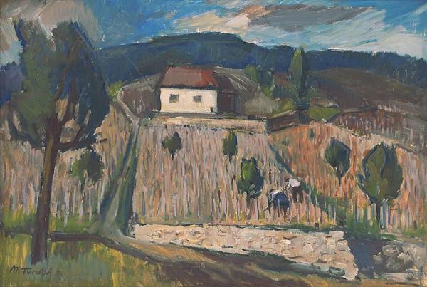 Martin Tvrdoň - Domček vo vinohradoch