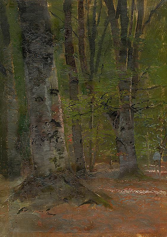 Ladislav Mednyánszky – Štúdia lesného interiéru