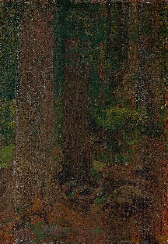Ferdinand Katona – Štúdia lesa